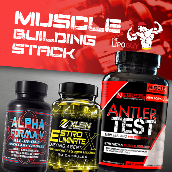 Can Hardcore muscle building stack phrase