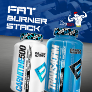 Trans4orm_CARNITINE500_Stack