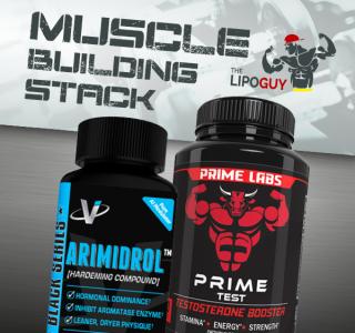 Prime Test & Arimidrol Stack