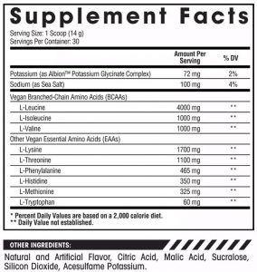 Arms Race Nutrition Replenish BCAA ingredient Panel